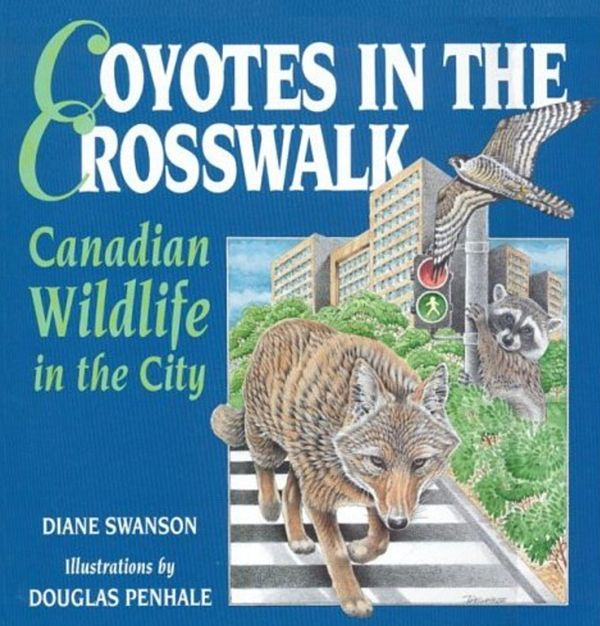 Coyotes in the Crosswalk