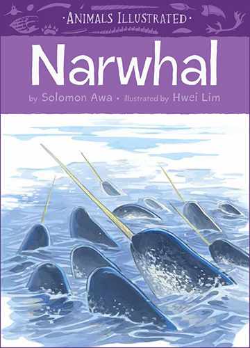 Animals Illustrated: Narwhal
