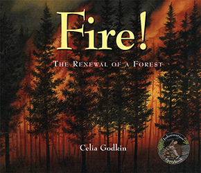 Fire!: The Renewal of a Forest