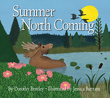 Summer North Coming