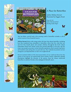 Butterflies Flyer
