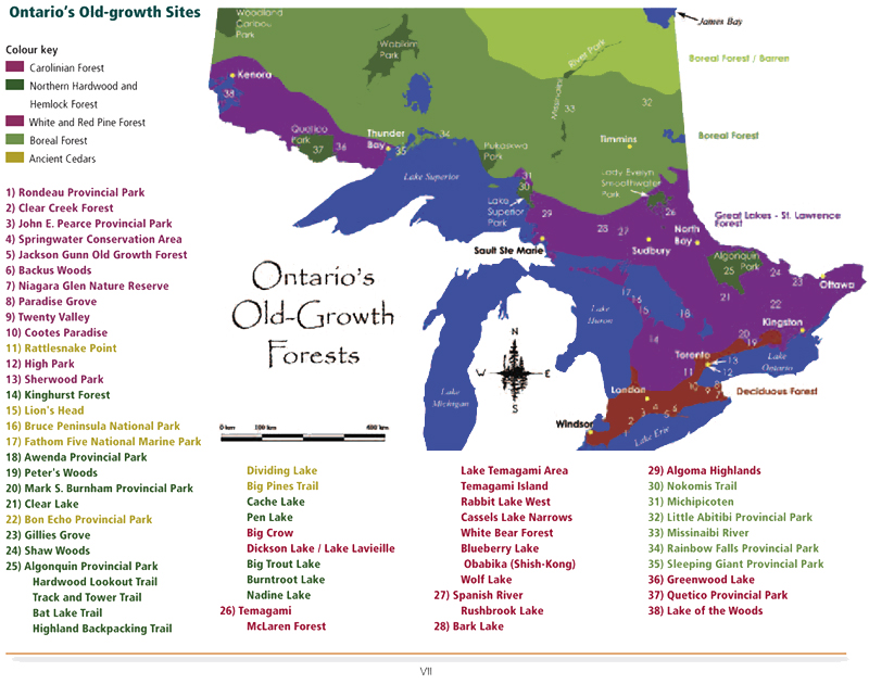 Canada Virgin Forest Map Ontario's Old Growth Forests Map